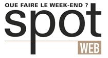 Logo Spot Web